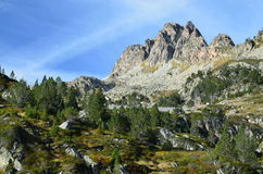 Valley Campan in the Hauts Pyrenees Royalty Free Stock Photos