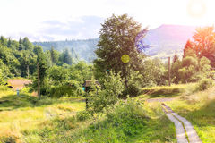 Valley in Carpathian mountains Stock Image