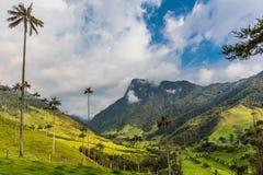 Valley Cocora Salento El Bosque de Las Palmas Quindio Colombia. El Bosque de Las Palmas Landscapes of palm trees in Valley Cocora near Salento Quindio in stock photos