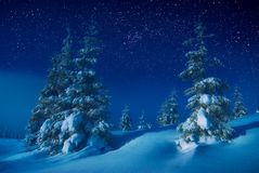 The valley covered with snow in a light of moon Royalty Free Stock Photo