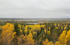 A valley covered with trees and two lakes. A valley covered in a forest of green and yellow trees and a couple lakes under a grey sky Royalty Free Stock Image