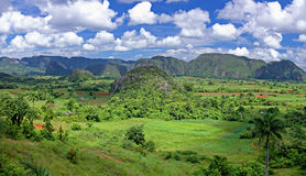 Valley  in Cuba Royalty Free Stock Images