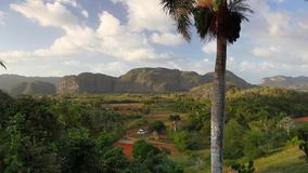 Valley de Vinales, Cuba. Famous Cuba farmland tobacco area, Valley de Vinales, Pinar del Rio, Cuba stock video