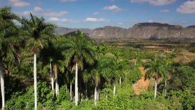 Valley de Vinales, Pinar del Rio, Cuba. stock footage