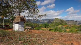 Valley de Vinales, Pinar del Rio, Cuba. Famous Cuba farmland tobacco area, Valley de Vinales, Pinar del Rio, Cuba stock video