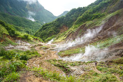 Valley of Desolation in Dominica. Volcanic valley on the island of dominica during the boiling lake hike while walking through the valley of desolation stock photography