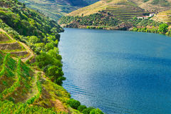 Valley  Douro Royalty Free Stock Images