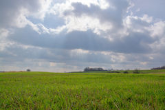 Valley of the Elbe, Germany Royalty Free Stock Image