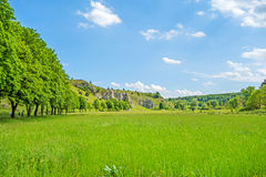 Valley Eselsburger Tal - green meadow Royalty Free Stock Image