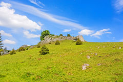 Valley Eselsburger Tal - impressive rocks Royalty Free Stock Photo