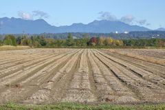 Valley Farmland Ready for Planting Stock Images