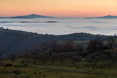 Valley filled by fog at sunset Royalty Free Stock Photo