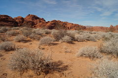 Desert landscape. View in Valley of Fire, Nevada Stock Photography