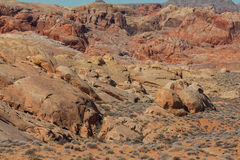 Valley of Fire Rugged Landscape Royalty Free Stock Image
