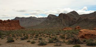 Valley of Fire Series 16 Stock Image