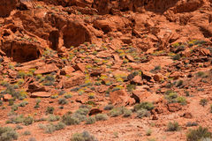 Valley of Fire State Park, Nevada Stock Images