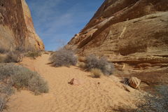 Hiking trail in Valley of Fire, Nevada, USA. Trekking path in Valley of Fire, Nevada Royalty Free Stock Image