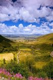 Valley of Flower in tibet Stock Images