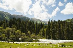 Valley of Flowers in Kyrgyzstan Royalty Free Stock Photography