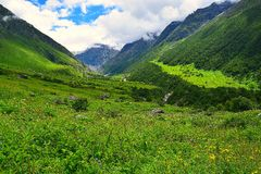Valley of Flowers National Park, Uttarakhand, India. This is a photograph of Valley of Flowers National Park, Uttarakhand, India... The valley, moutains, and Stock Photos