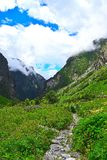 Valley of Flowers National Park, Uttarakhand, India. This is a photograph of Valley of Flowers National Park, Uttarakhand, India... The valley, moutains Royalty Free Stock Photo