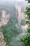 Valley in fogs. Indistinct and present in special weather Royalty Free Stock Photography