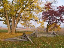 Valley Forge Morn Royalty Free Stock Photos