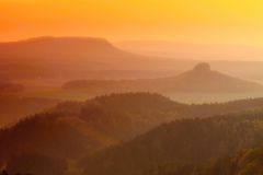 Valley full of colorful mist and peaks of high trees are sticking up to sky. Romantic autumn sunset. Stock Photography