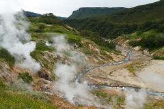 Valley of Geysers. Kamchatka Royalty Free Stock Photo