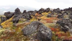 Valley of Geysers - Kamchatka, Russia Stock Photography
