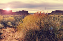 Valley of the Gods Stock Photography