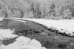 Valley of Guiers in Chartreuse Black and white royalty free stock images