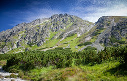 Valley in High Tatras, Slovakia Royalty Free Stock Images