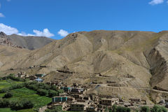 Valley in Himalayas. Oasis in the drought area of Himalayas Stock Images