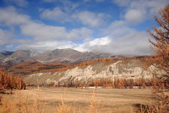 The valley of the Irkut river in the mountains in the fall. Yellow larch tree in October and the outlines of the Tunka ridge of the mountain massif of the Royalty Free Stock Photo