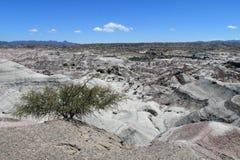Valley Ischigualasto, Valle de la Luna Royalty Free Stock Photos