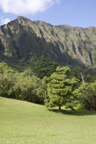 Valley by the Ko'olau Mountains on Oahu Royalty Free Stock Images