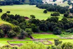 Valley Landscape Stock Photo
