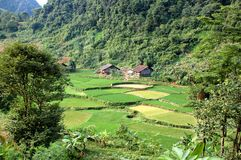 Valley landscape in Vietnam Royalty Free Stock Image