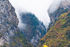 Valley in the mist Royalty Free Stock Photography