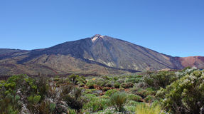 Valley with mountains. In Canary islands Stock Photography