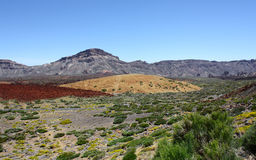 Valley with mountains. In Canary islands Royalty Free Stock Photo