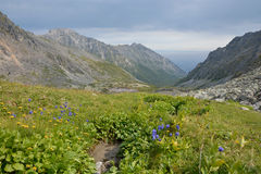 The valley in the mountains of the Barguzin ridge at Lake Baikal Stock Image