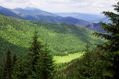 Valley in the mountains. In Tatras in Poland Royalty Free Stock Photo