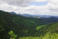 Valley in the mountains. In Tatras in Poland Stock Photos