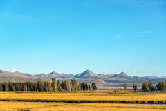 Valley and Mountains in Yellowstone Royalty Free Stock Photography