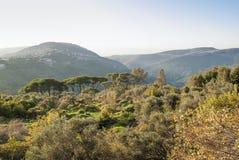 Valley near beirut in lebanon Royalty Free Stock Photos