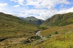 Valley in norwegian mountains. Stock Photos