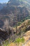 Valley of the Nuns (Curral das Freiras) - Madeira - Portugal Royalty Free Stock Photography