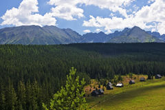 Valley Olczyska in the Polish Tatras Royalty Free Stock Photos